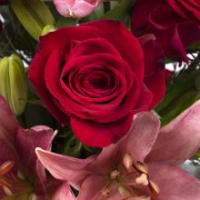 Storia d'amore unica: Rose e Gigli