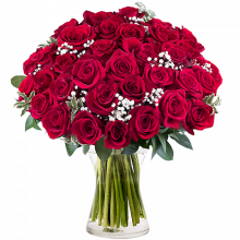 PS. I Love You: 35 Red Roses