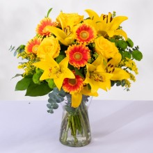 Lumière: Roses, Lilies and Gerberas