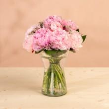 Belleza Barroca: Peonías Rosas