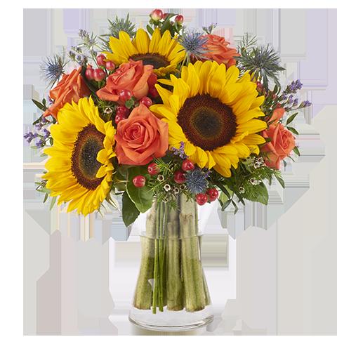 Coucher de soleil: Tournesols et Roses orangées
