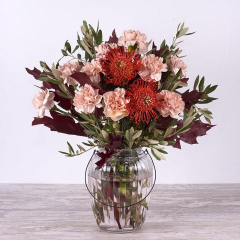 Protea: otoño de claveles
