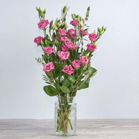 Rosita: lisianthus rosa