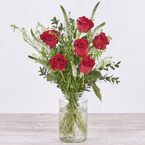 Fortaleza: rosas rojas y verónica