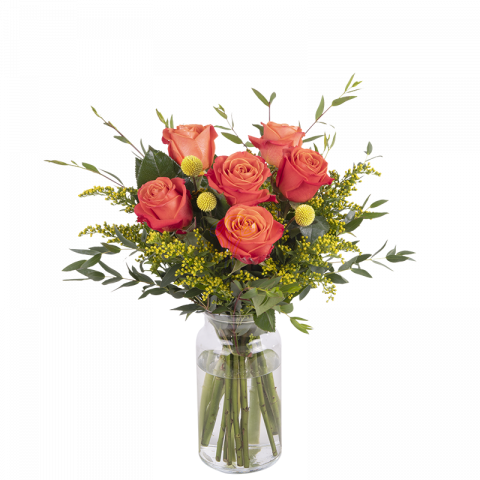 Sweet Papaya: 6 Orange Roses