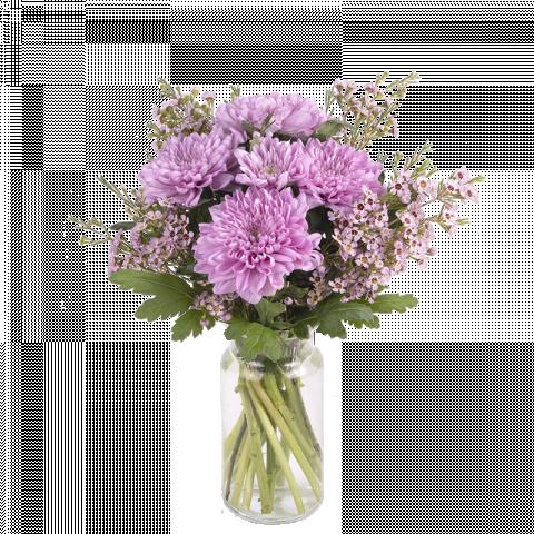 Pink Lover: Anastasias y Flor de Cera