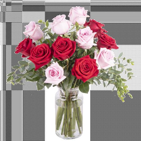 Soulmates: Rosas Rosas y Rojas