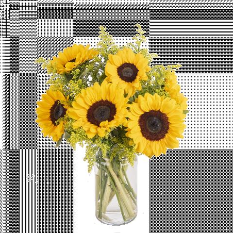 Saludo al sol: 5 girasoles y solidago