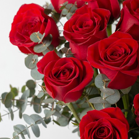 My End and My Beginning: 20 red roses
