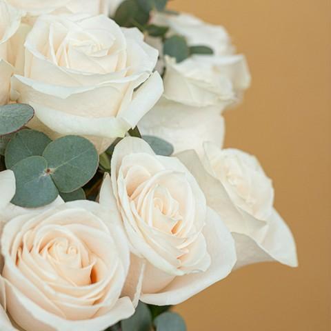 Algodón: rosas blancas