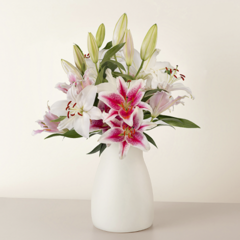 New Tradition: lilies